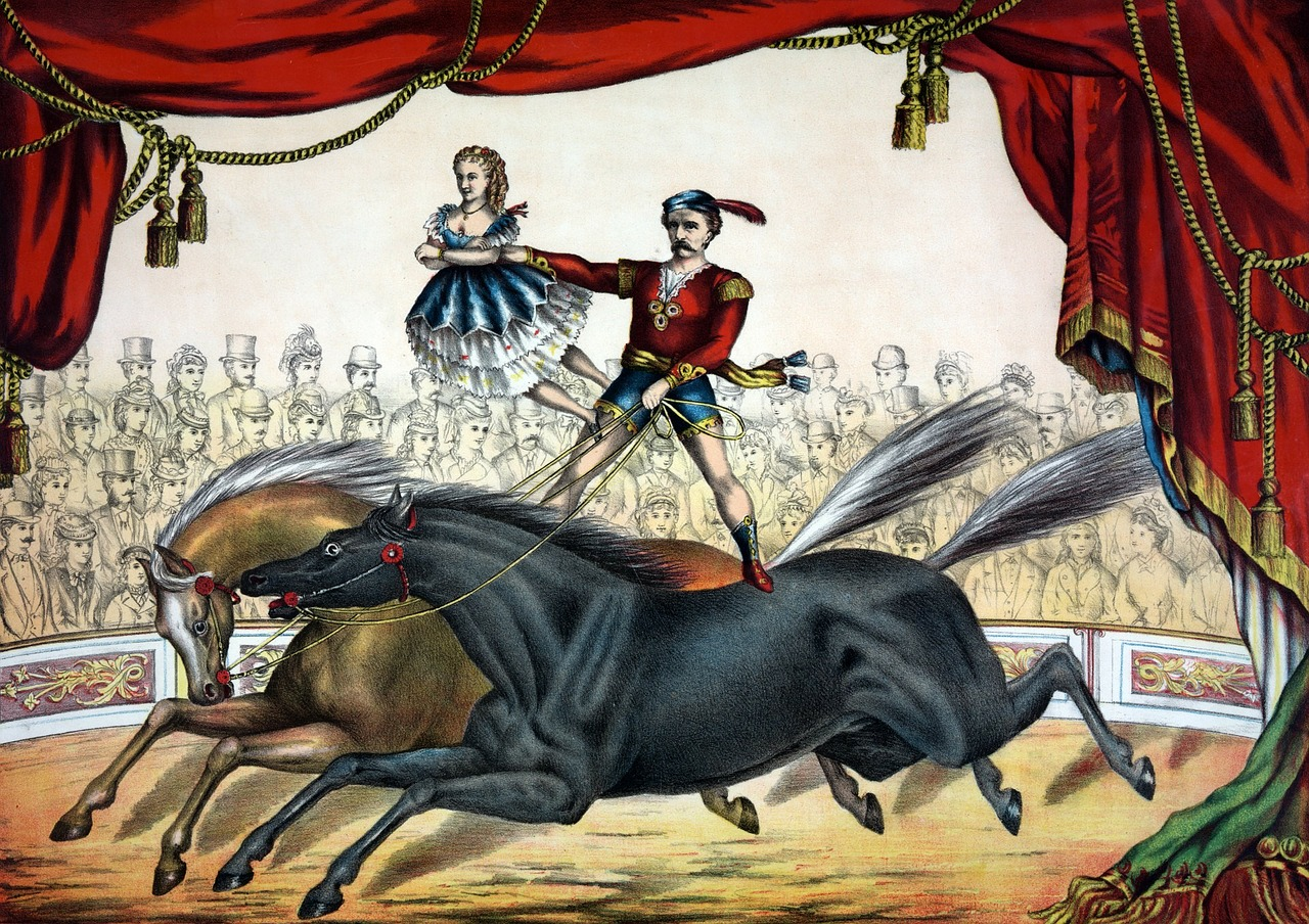 trotting horses with extended legs in a circus