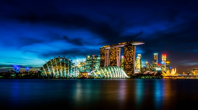an amazing view of Singapore